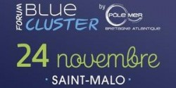 Forum-Blue-Cluster-2015_event_full