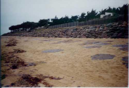 Plage début janvier 2000