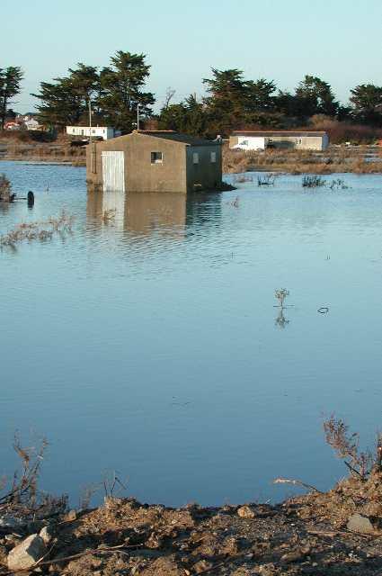 inondations14.jpg