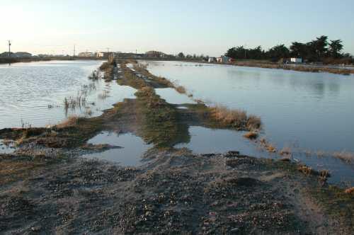 inondations15.jpg